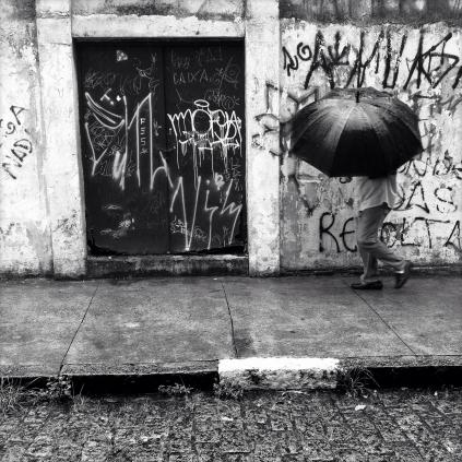 ©Luis Fernandes